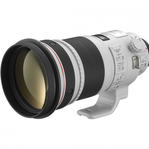 EF 300mm f2.8 L IS II USM FSL w CAP
